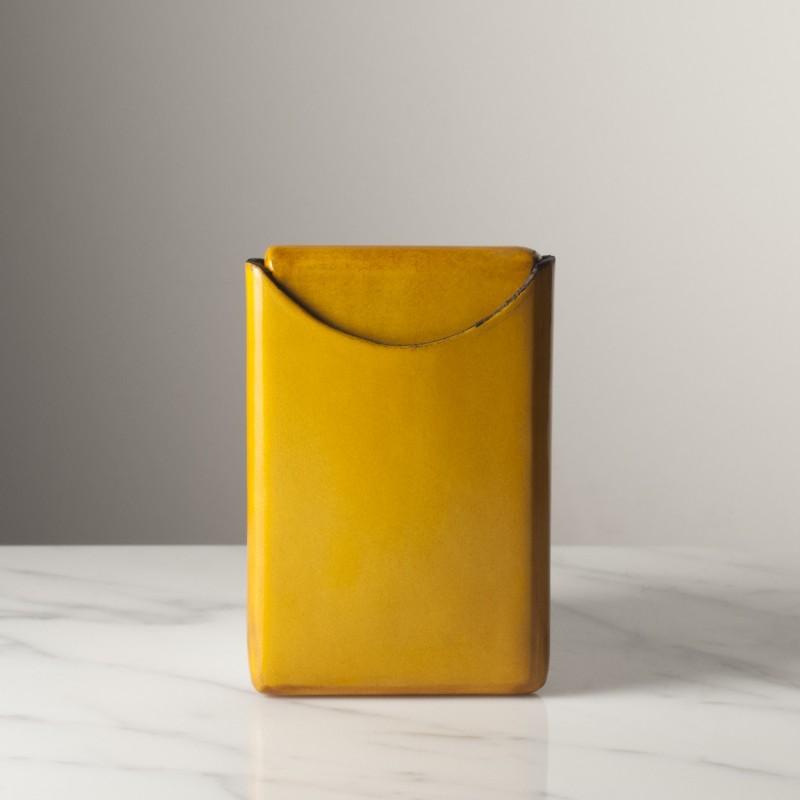 regis-jaune-brillant.jpg